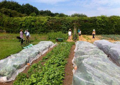 Fold Farm for website-12