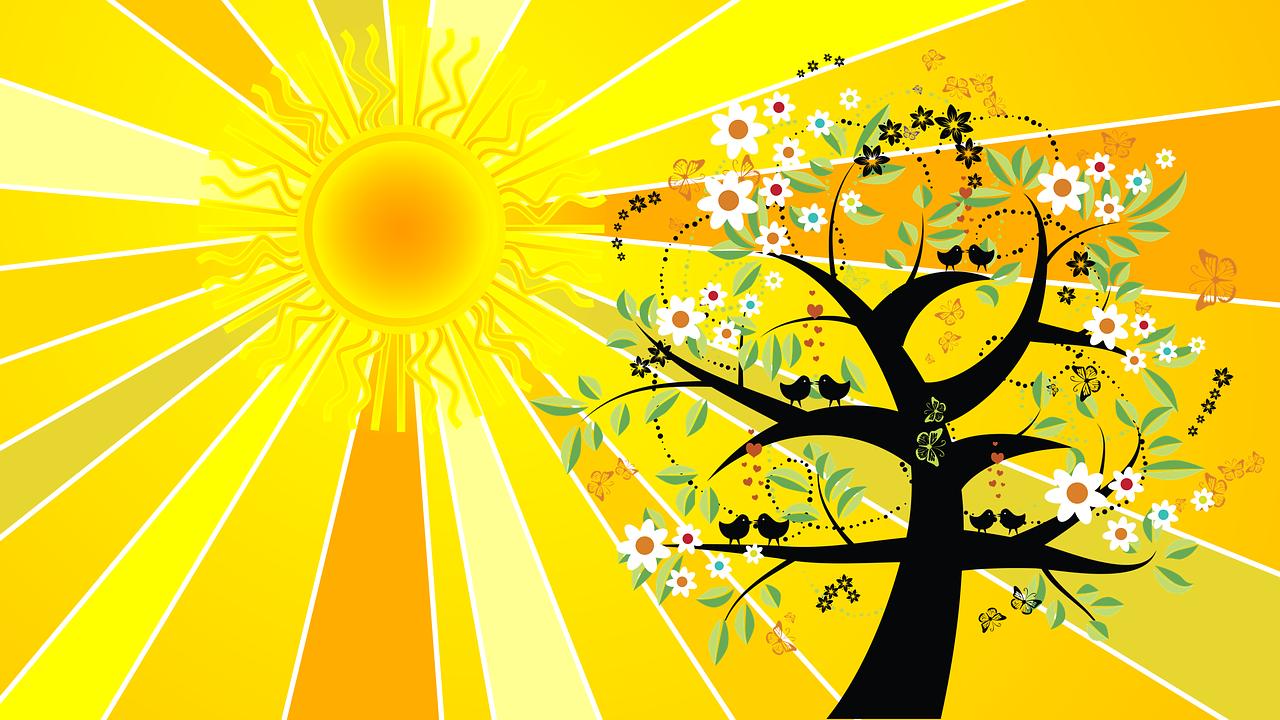 summer solstice sun rays trees