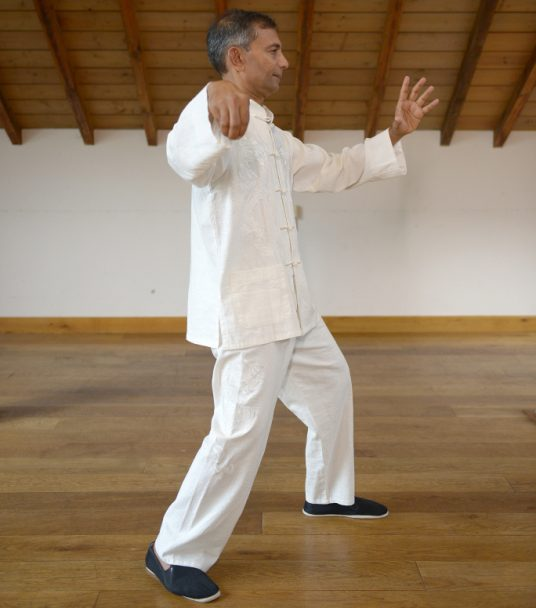 Altair tai chi qigong cart house wooden floor