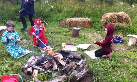 Children's Farm and Nature Play at the Fold