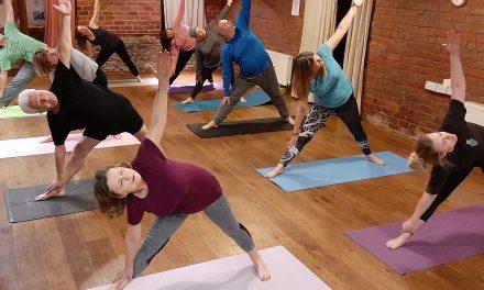 Yoga at The Fold